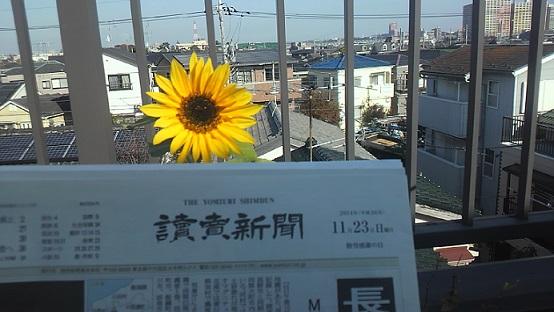 2014112309380000.jpg